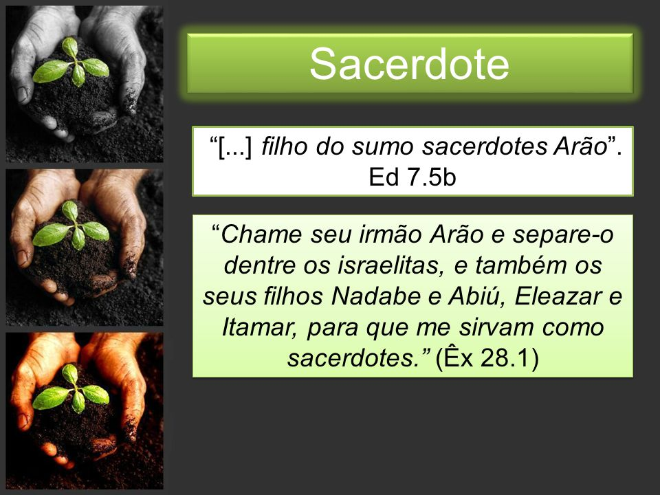 [...] filho do sumo sacerdotes Arão . Ed 7.5b